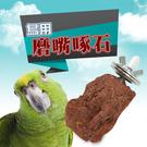 金德恩 美國製造 LIXIT寵物用品囓齒類磨嘴潔牙啃咬石