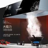 220V廚房抽油煙機家用小型壁掛式頂吸中式吸油煙機脫排老式吸油機 DJ10984『麗人雅苑』