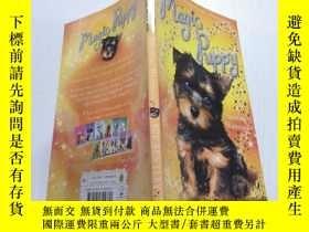 二手書博民逛書店Sunshine罕見Shimmers (Magic Puppy):陽光閃耀(魔法小狗)Y212829