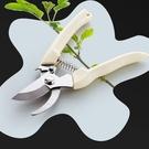 [拉拉百貨]園藝 修剪 剪刀 不銹鋼 剪果樹花枝剪刀 粗枝剪刀 園林 工具剪刀 園藝 修剪