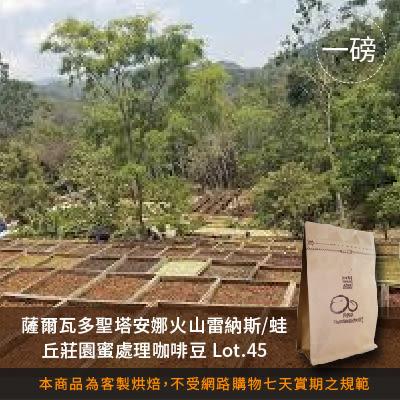 【咖啡綠商號】薩爾瓦多聖塔安娜火山雷納斯蛙丘莊園蜜處理咖啡豆 Lot.45(一磅)