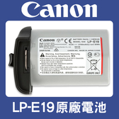 【盒裝】全新 LP-E19 原廠電池 CANON LPE19 適用 Canon EOS 1DX MARK II 1DX