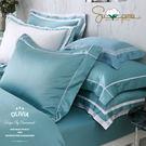加大雙人床包枕套三件組【 DR3002 Hamilton  綠 】 500織高織紗匹馬棉 OLIVIA