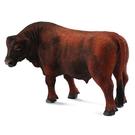 【永曄】collectA 柯雷塔A-英國高擬真動物模型-陸地動物系列-紅安格斯牛