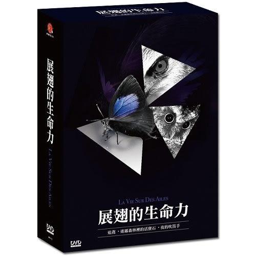 展翅的生命力 DVD - 迷霧森林裡的活寶石/夜的吹笛者/追鳶