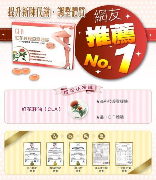 草本之家★夏日超夯★史上最優惠★紅花籽油CLA100粒1盒