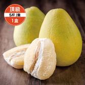 【鮮食優多】清泉 麻豆30年老欉頂級文旦5斤裝1盒(好評預購中!!30年老欉,柚香多汁)