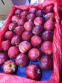 每顆17元起【果之蔬-全省免運】紐西蘭gala最新鮮的蘋果X1箱(9kg±10%/箱 每箱60顆)