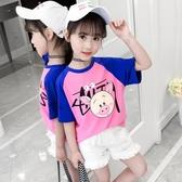純棉女童裝T恤2020新款7兒童短袖圓領上衣9韓版中大女孩夏季12歲9 童趣