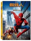【停看聽音響唱片】【DVD】蜘蛛人返校日雙碟特別版