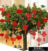 快速出貨 新年元旦盆景小燈籠掛飾室內戶外植物裝飾用品無紡布掛件場景【全館免運】