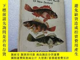 二手書博民逛書店MARINE罕見FISHES Of New Zealand 16