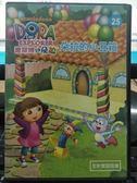 挖寶二手片-B15-032-正版DVD-動畫【DORA:愛探險的朵拉 25 雙碟】-套裝 國英語發音 幼兒教育