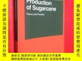 二手書博民逛書店Production罕見of Sugarcane: Theory