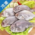 冷凍肉魚6尾裝500G±10%/包【愛買冷凍】