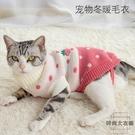貓咪衣服毛衣小奶貓狗狗防掉毛秋冬裝保暖寵物【時尚大衣櫥】