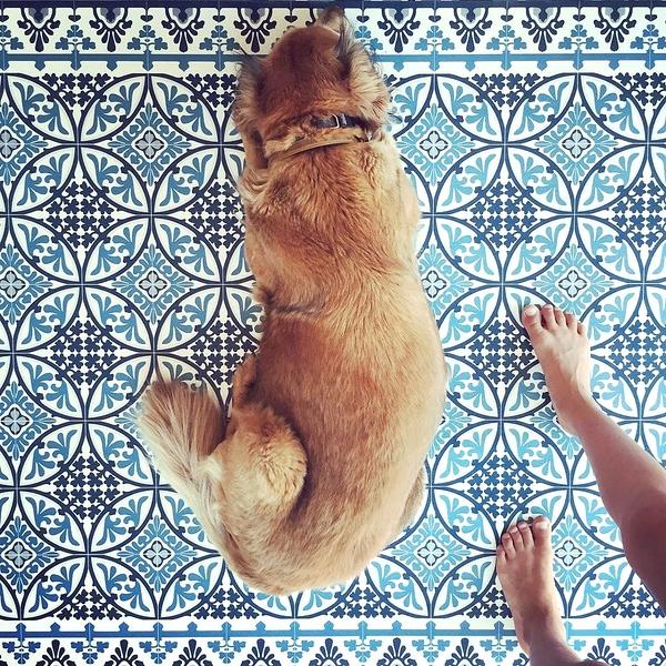地墊 玄關墊 廚房地墊 幾何形 磚紋 Beija FlorTile Flooring T9 (60cm×80cm)