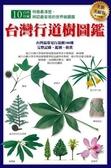 (二手書)台灣行道樹圖鑑(全新美耐版)