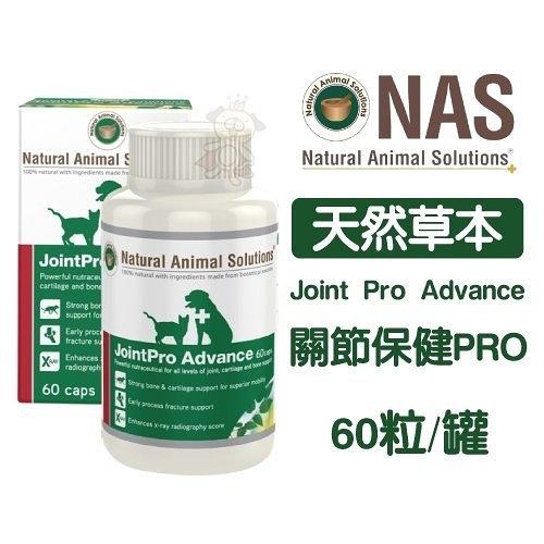 『寵喵樂旗艦店』NAS《天然草本-Joint Pro Advance - 關節保健PRO》提升骨質密度 60粒/罐