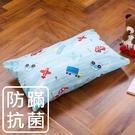鴻宇 兒童枕 防蟎抗菌纖維枕 夢想號 美國棉授權品牌 台灣製1573