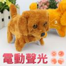 ⭐星星小舖⭐台灣出貨 電動聲光小狗 搖尾小狗 小狗玩具 電動小狗 聲光效果