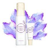 佐登妮絲 紫花苜蓿活妍眼霜20ml+保濕乳100ml  頂級玫瑰精油香氣