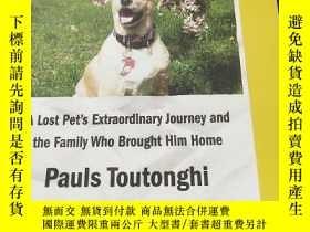 二手書博民逛書店Dog罕見Gone: A Lost Pet's Extraordinary Journ.Y16972