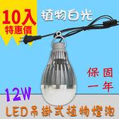 LED 植物生長燈 吊掛式 設計 10入起訂 12W / 12瓦 E27 LED植物燈泡 -植物白光 JNP016
