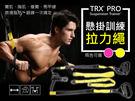 【DE129】TRX Pro P3最新旗艦款 懸掛式訓練帶 拉力繩 彈力帶 彈力繩 拉力帶 瑜珈繩高級阻力帶