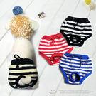 俏皮條紋寵物生理褲(寵物衣服.狗狗衣服.寵物服.寵物用品.便宜.推薦.哪裡買)