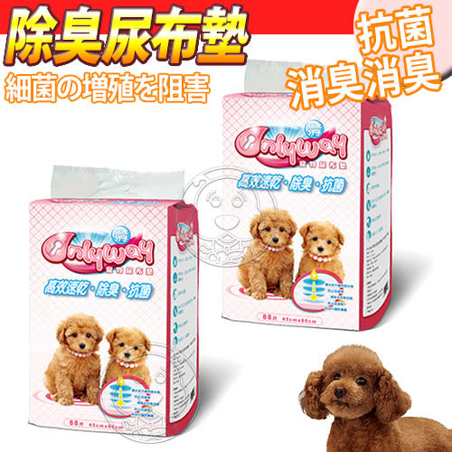 【zoo寵物商城】OnlyWay》高效速乾除臭抗菌寵物狗狗尿布墊88片/包