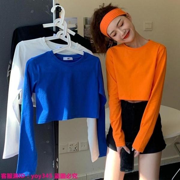 限時特惠T恤 春季新款韓版小個子短款露臍高腰上衣修身長袖打底衫t恤女潮