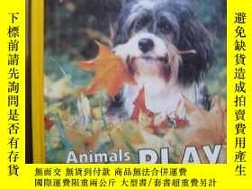 二手書博民逛書店ANIMALS罕見AT PLAYY10980 ANIMALS AT PLAY 出版1988