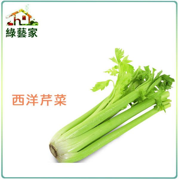 【綠藝家】大包裝F06.西洋芹菜(美國芹)種子15克