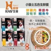 【毛麻吉寵物舖】HyperrRAW超躍 小獵士五色生鮮餐 綜合口味  1公斤4件組(500G 替代出貨)