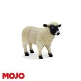 【Mojo Fun 動物星球頻道 獨家授權】 黑面母綿羊 387058