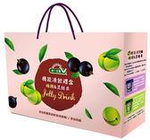 健康機能凍飲禮盒(梅精/黑醋栗)