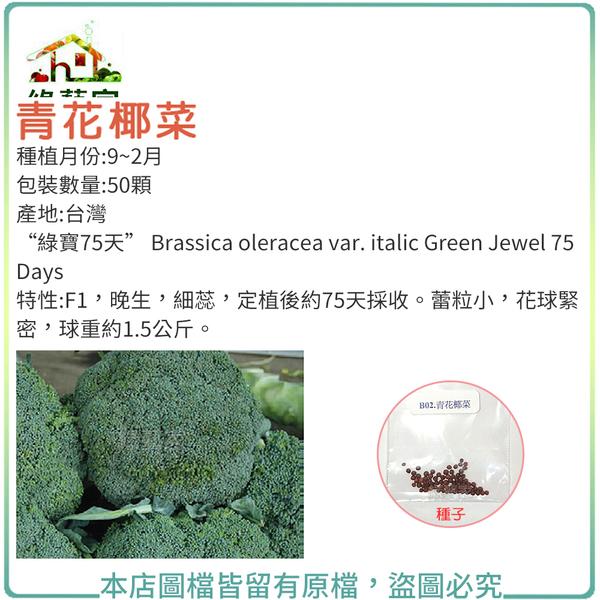 【綠藝家】B02.青花椰菜種子50顆