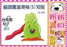 *粉粉寶貝玩具*貓頭鷹溜滑梯 (S)短滑道~台灣製~ST安全玩具*外銷精品