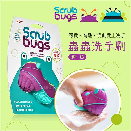 ✿蟲寶寶✿【美國Scrub Bugs】 讓寶貝愛上洗手~勤洗手遠離腸病毒 三倍清潔力 洗手蟲/清潔刷 紫色