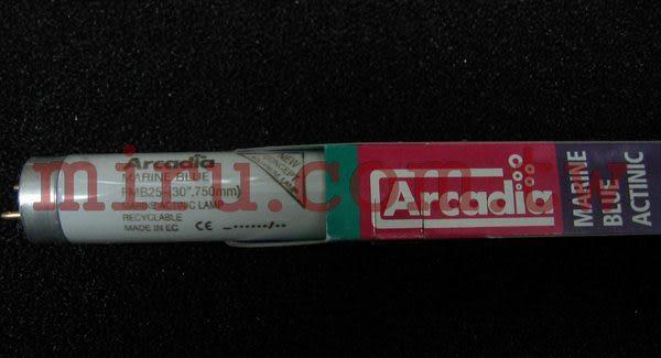 【西高地水族坊】英國阿卡迪亞Arcadia 海水長效培養燈管MARINE BLUE ACTINIC T8 FL (25W)