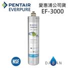 EF-3000 愛惠浦濾芯 贈7-11禮卷$300 EVERPURE 台灣愛惠浦 公司貨 濕式碳纖活性碳 EF3000 濾心
