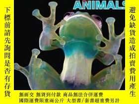 二手書博民逛書店Wild罕見Discoveries: Wacky New Animals 野外大發現:稀奇古怪的動物們Y449