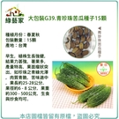 【綠藝家】大包裝G39.青珍珠苦瓜種子1...