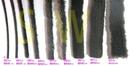 自黏毛刷條 A6 底座?6.9 mm 毛長20 mm(背膠-3米(約300公分)售)防撞條 氣密條 門縫條 隔音條