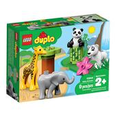 LEGO 樂高 Duplo 得寶系列 10904 野生小動物 【鯊玩具Toy Shark】