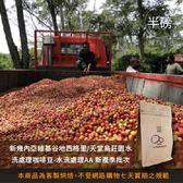 【咖啡綠商號】新幾內亞維基谷地西格里天堂鳥莊園水洗處理咖啡豆-水洗處理AA新產季批次(半磅)
