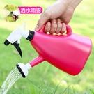澆花噴霧器 小型噴壺家用噴水壺園藝養花工具小噴霧器氣壓式澆水【快速出貨八折搶購】
