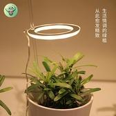 植物燈 植物補光燈全光譜led仿太陽燈上色室內家用usb食蟲植物多肉補光燈寶貝計畫 上新