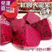 預購-家購網嚴選 屏東紅肉火龍果 5斤x4盒 中 (約9-11顆/盒)【免運直出】